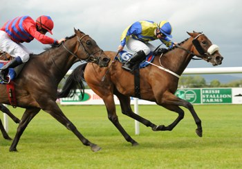 Tipperary 6-8-10  INVINCIBLE ASH & Gary Carroll Win The Abergwaun Stakes From SANTO PADRE & Johnny Murtagh.(Photo HEALY RACING)
