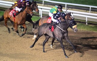 Skerray Rules Dundalk 1