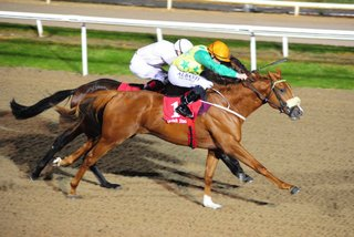 first-premio-dundalk-1