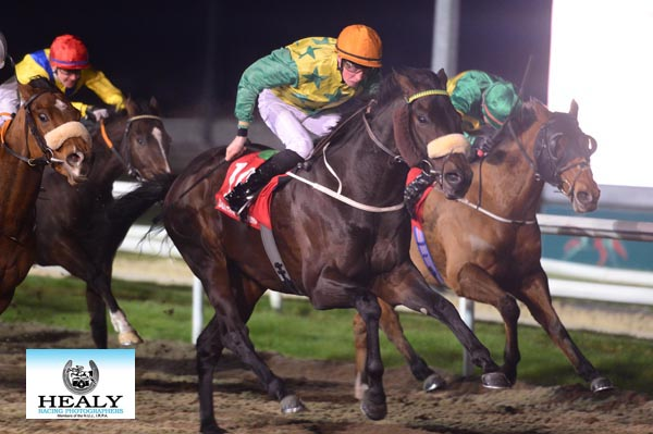 Eric Koh's INVINCIBLE RYKER winning the Floodlit Friday Nights At Dundalk Stadium Apprentice Handicap - Dundalk 24.11.17