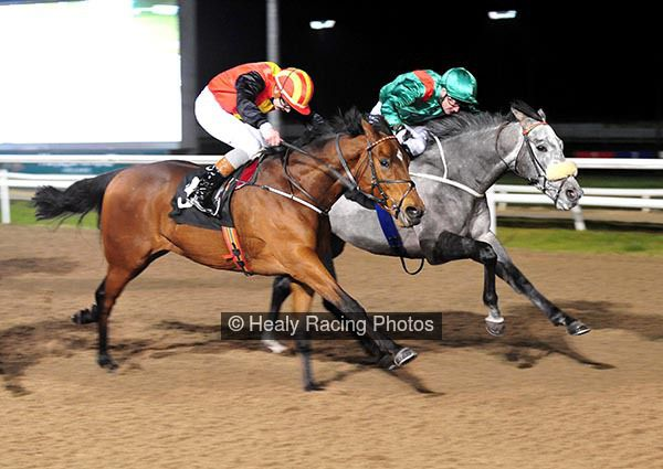 HH Aga Khan's Karakour winning the Meridian Security Ltd Maiden (Plus 10 Race) at Dundalk 12.01.18