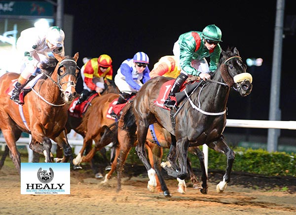DUNDALK 2-2-18. HH Aga Khan's ADALIYA and Conor Hoban winning the Ashbrook Foods