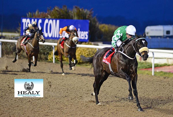 BLACKGOLD FAIRY and Pat Smullen win the AV Direct Irish EBF Fillies Maiden - Dundalk 23.02.18  Photo HEALY RACING.