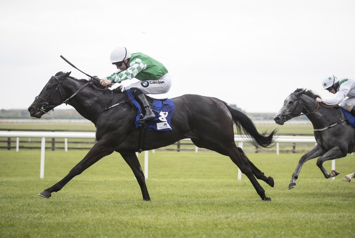 Platinum Warrior Curragh 270518